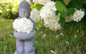 stress-compléments-alimentaire-zen