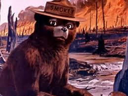 Smokey the bear says...
