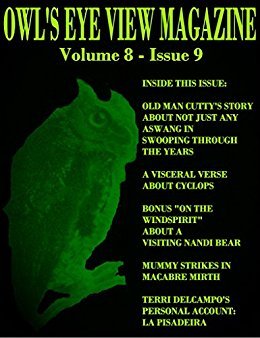 OWL'S EYE VIEW MAGAZINE VOLUME 8 - ISSUE 9