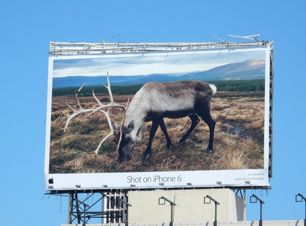 Apple Shot on iPhone 6 stag billboard