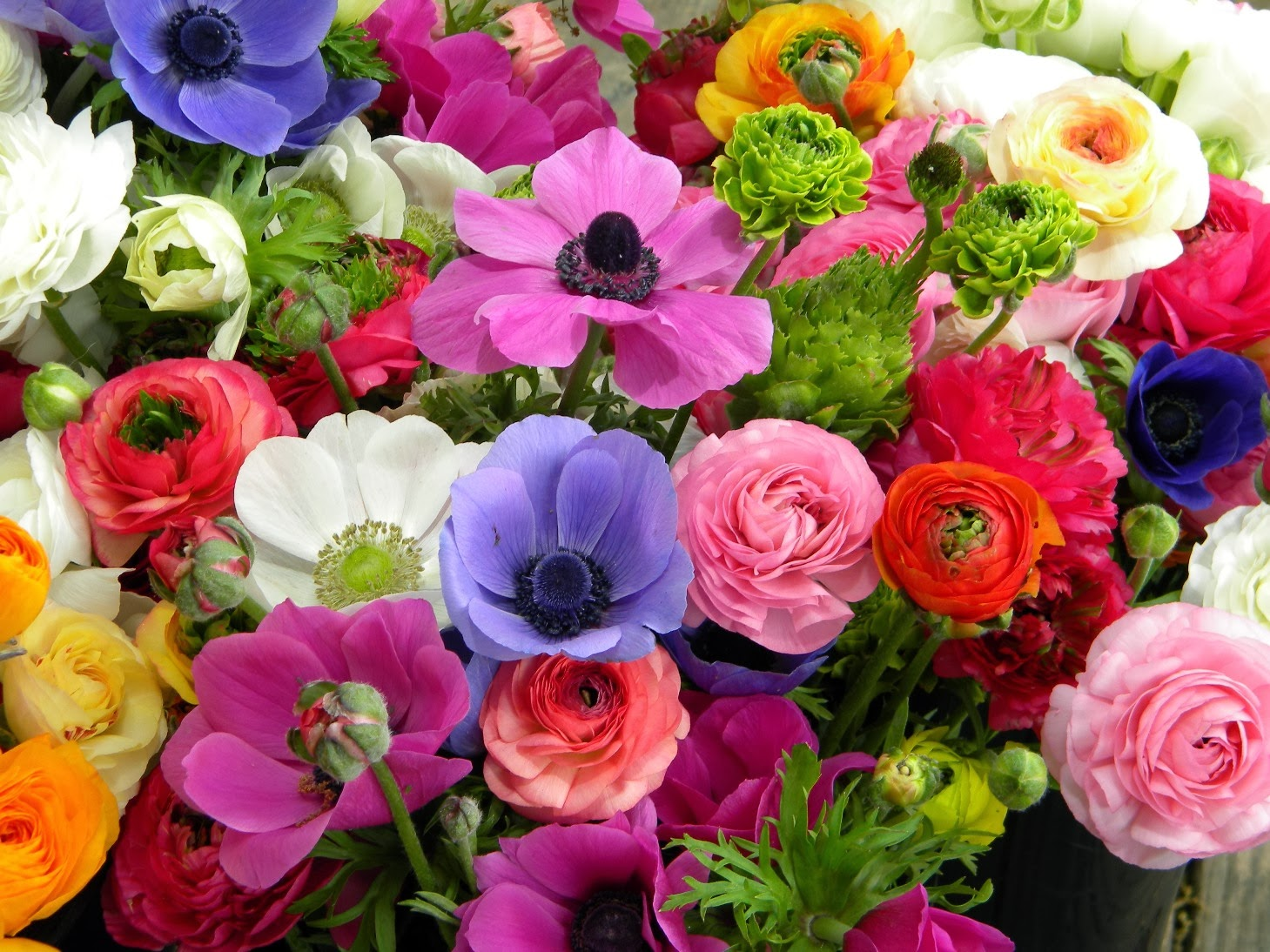 Wedding Flowers from Springwell: Ranunculus and Anemones for Spring ...
