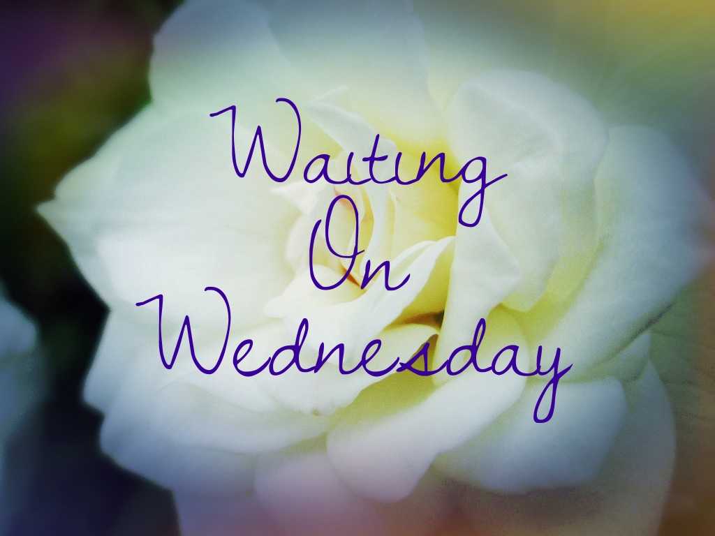 Waiting On Wednesday (18): The Retribution Of Mara Dyer By Michelle Hodkin