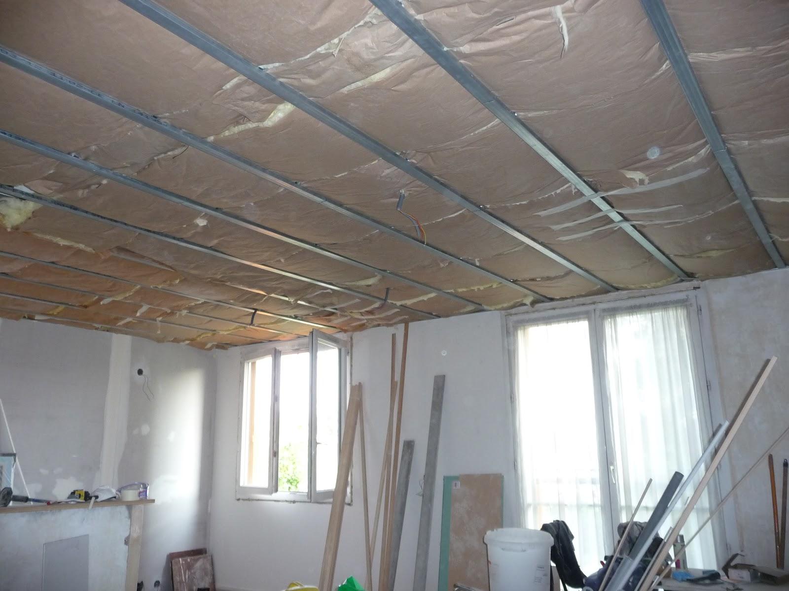 Plafond structure bois devis rapide guyane entreprise cpxv - Installer spot plafond existant ...