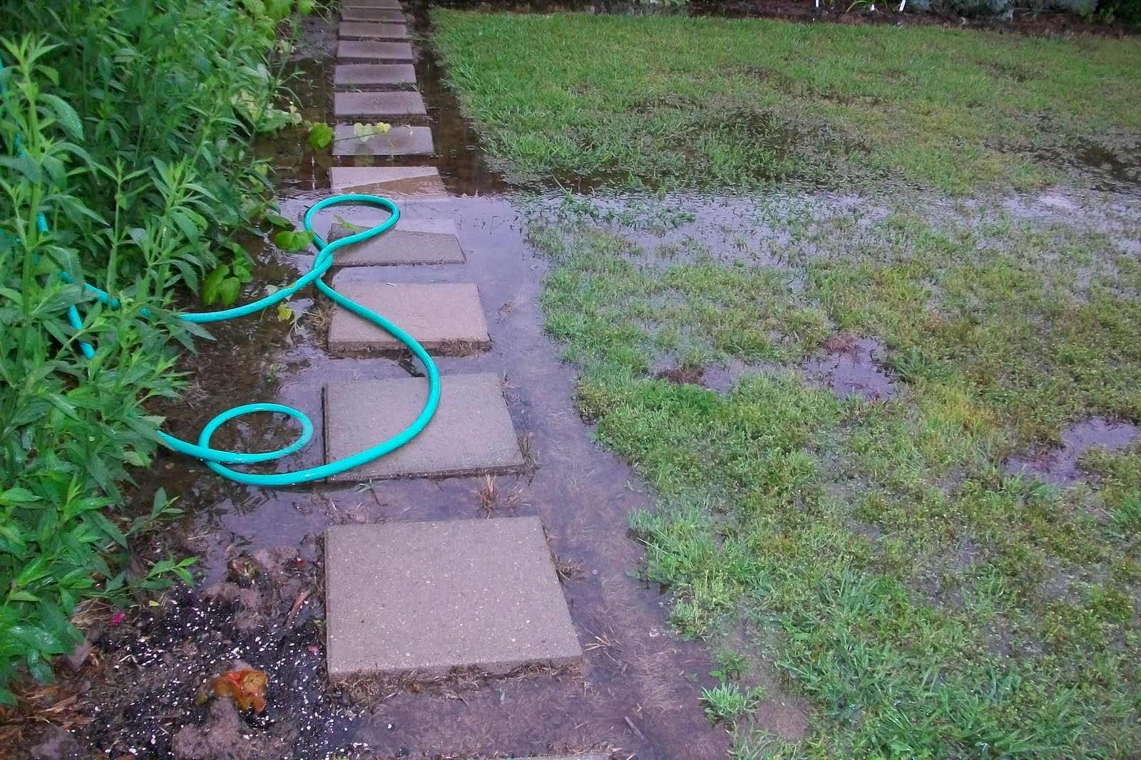 Gardening 4 life ankle deep in freezing water for Backyard flooding solutions