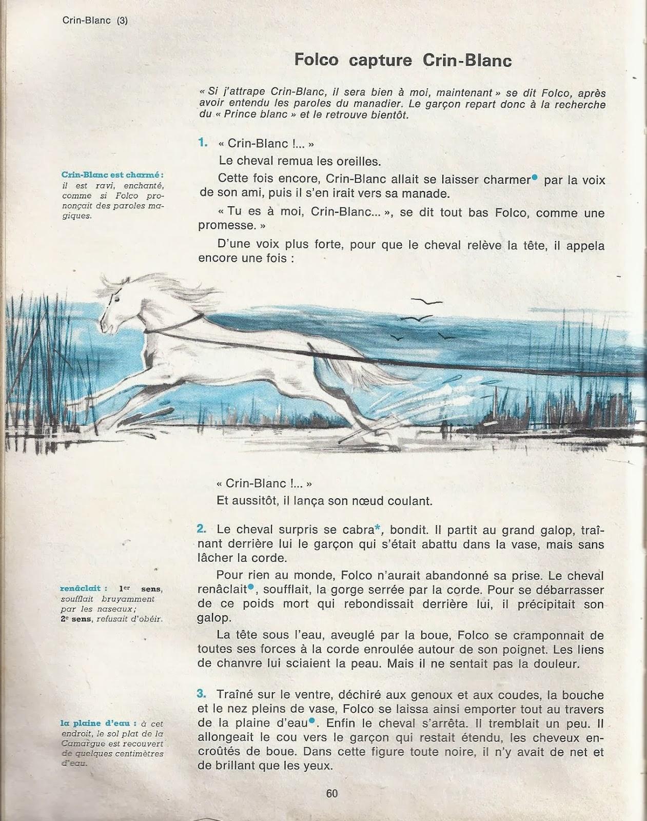 telecharger le cheval blanc roman pdf