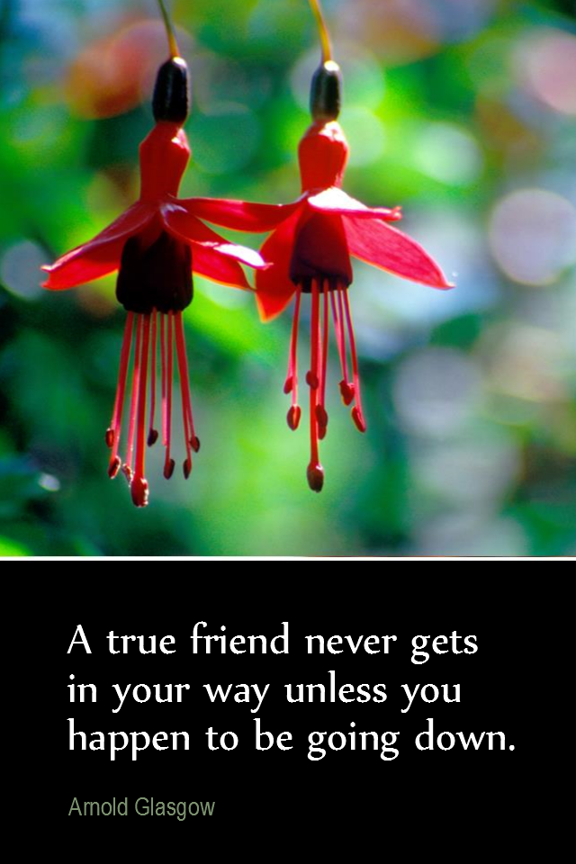 visual quote - image quotation for FRIENDSHIP - A true friend never gets in your way unless you happen to be going down. - Arnold Glasgow