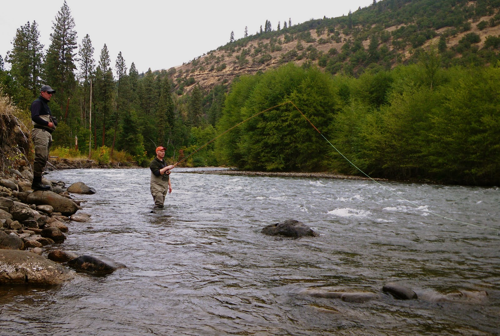 Oregon fly fishing report by larimer outfitters fishing for Klickitat river fishing report
