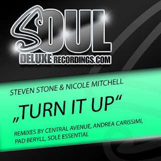 Steven Stone & Nicole Mitchell   Turn It Up (Central Avenue Remix) + 9