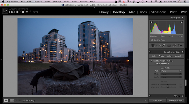 Adobe Photoshop Lightroom 5 - Develop