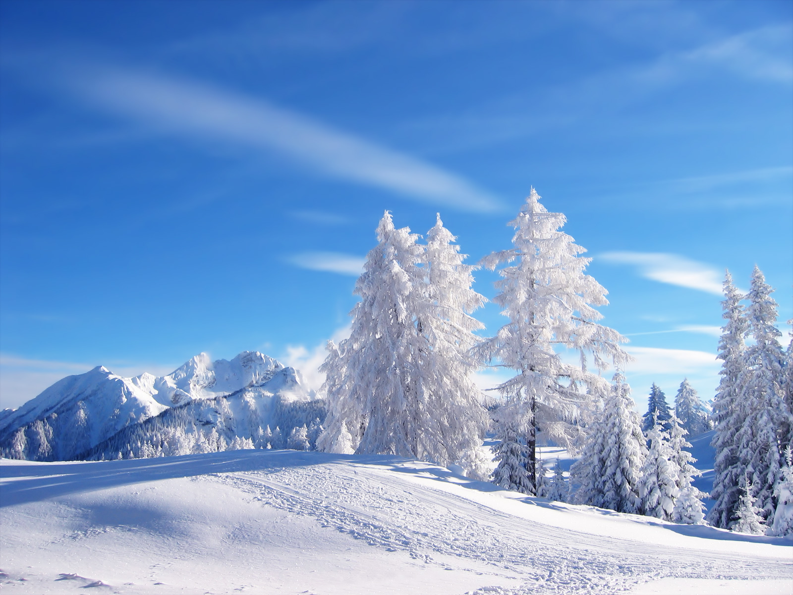 http://4.bp.blogspot.com/-6FpREWQtwTQ/Ti0T9aUKCkI/AAAAAAAAAhI/vgyV23mn9mc/s1600/Winter-Nature-Wallpapers.jpg
