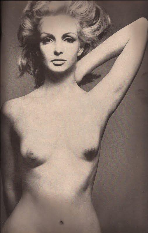 Contessa Christina Paolozzi, Harpers