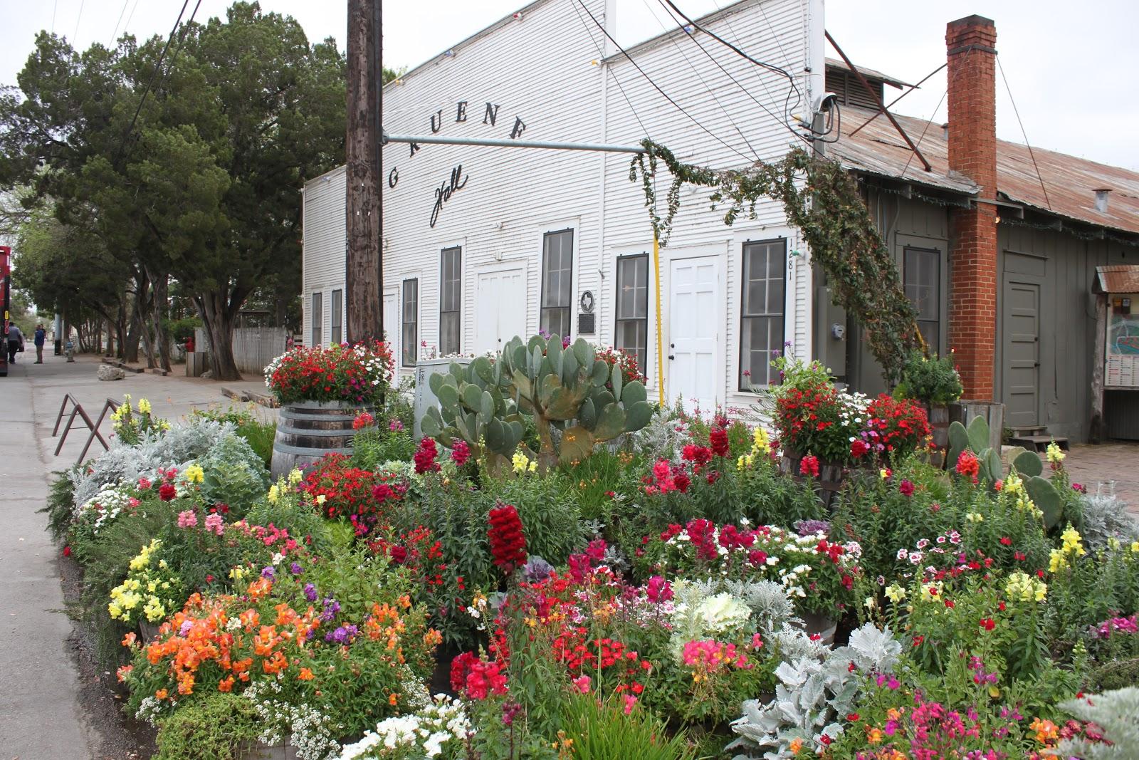 gruene historic district top 5 outdoor activities. Black Bedroom Furniture Sets. Home Design Ideas