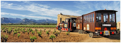 блог, Балеарские острова, Испания, фото, виноградник, винный погреб