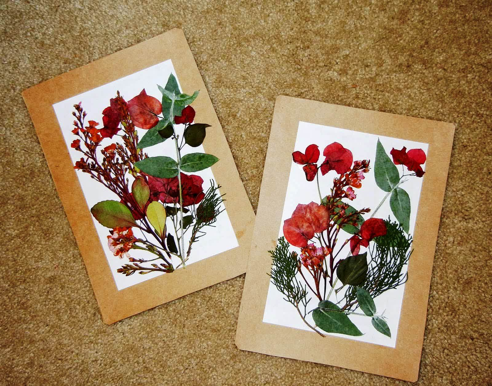 Pressed flowers craft project art craft gift ideas for Dried flowers for crafts