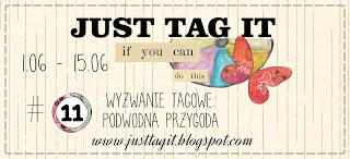 http://justtagit.blogspot.com/2015/06/wyzwanie-tagowe-11-podwodna-przygoda.html