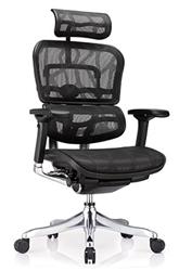 Ergo Elite Office Chair