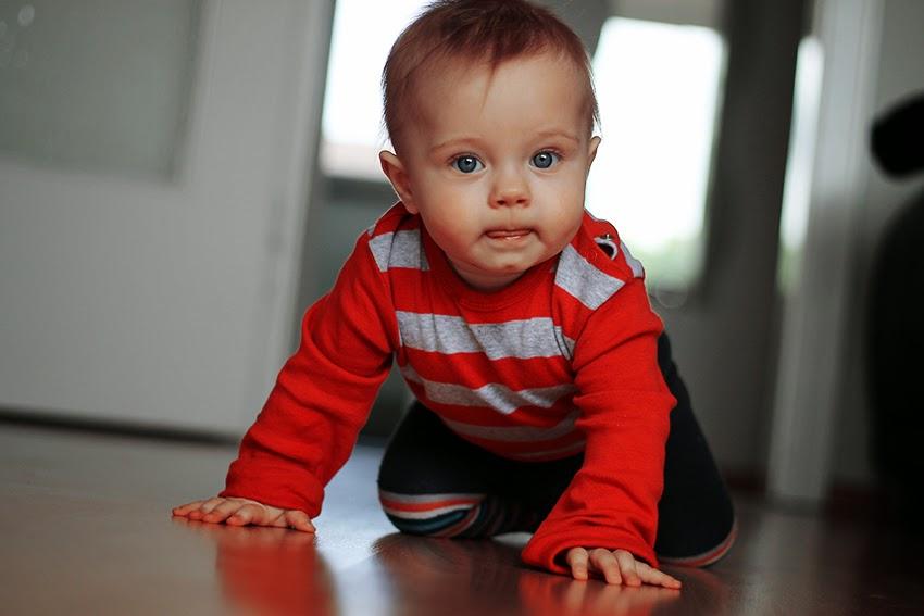 dziecko raczkuje