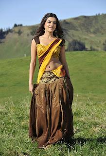 samantha  saree Pictures dookudu movie 005.jpg