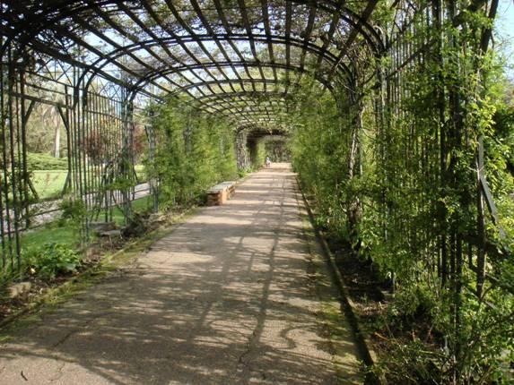 Garden center ejea el rosedal de montevideo en uruguay - Garden center ejea ...