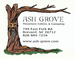 Ash Grove Mountain Cabins and Camping