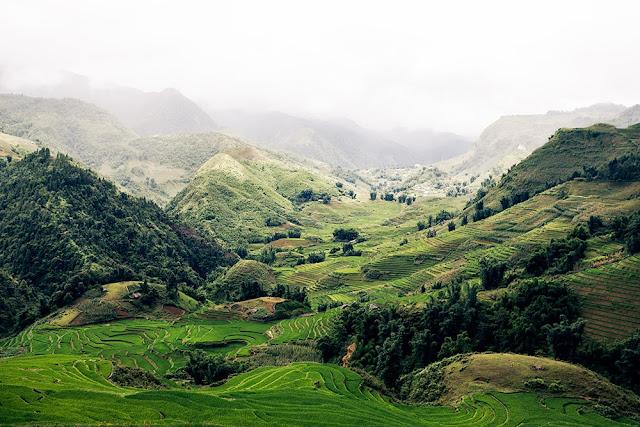 Greta tu photo diary vietnam part ii for Sa landscaping