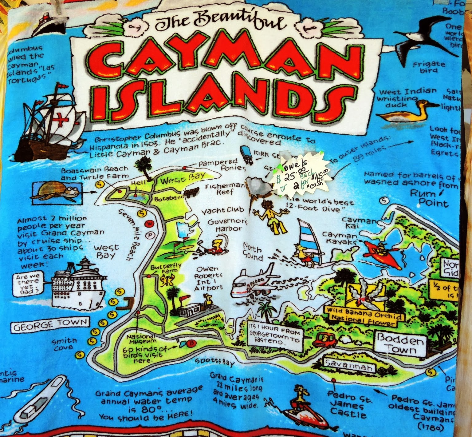 Dina's Travels: Cayman Islands stop on turtle farms in the usa, turtle farm grand cayman weddings, turtle farm isla mujeres, turtle island before columbus, turtle farm cayman islands, turtle reef grand cayman, turtle tank in grand cayman, cayman islands map, turtle underwater map,