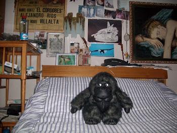 gorila en la cama