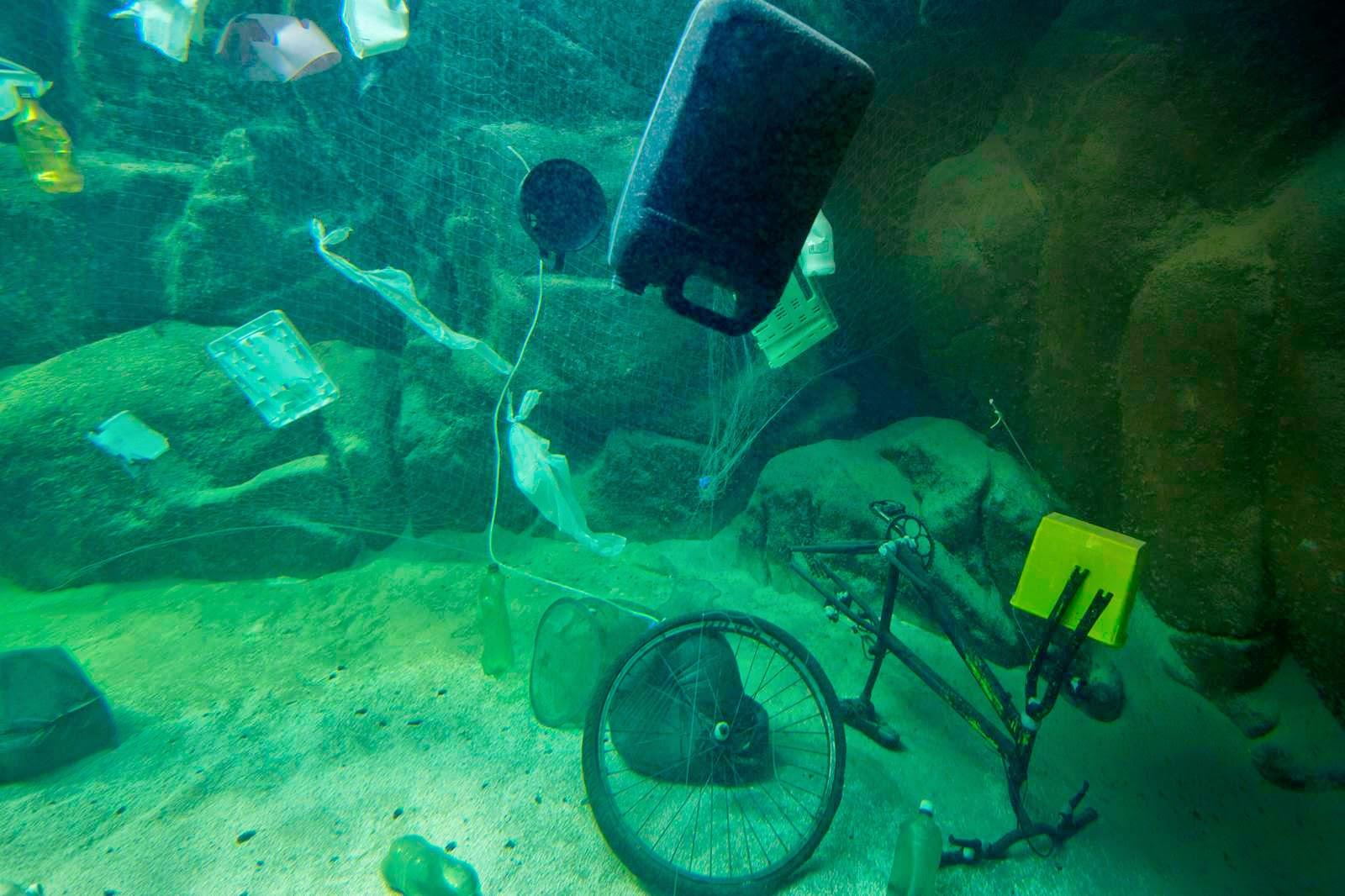 """Metade do """"tanque oceano"""" foi preenchido com os resíduos coletados pelos voluntários"""