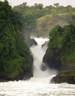 http://gorillasandwildlifesafaris.com/uganda/uganda_murchison%20falls%20and%20chimpanzee.htm