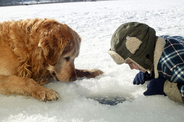 Live & Play Twin Cities: Weekend Happenings: Ice Fishing ...