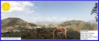 Paseos a caballo, paseos en burro, burrotaxi, excursiones a caballo