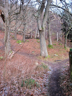 The start of the path around Craigendarroch, Deeside