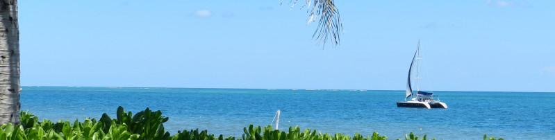 Luxury Lagoon Catamaran rental