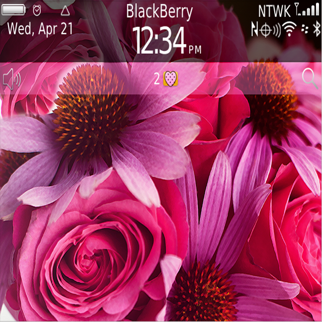 download free blackberry themes free painted flowers theme for