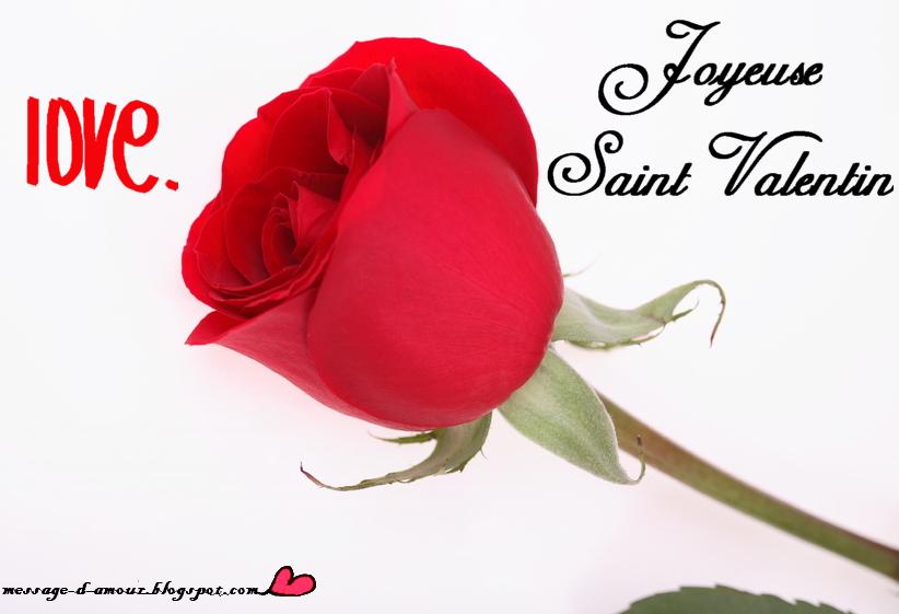 Cartes de voeux pour la st valentin message d 39 amour - Fleur de saint valentin ...