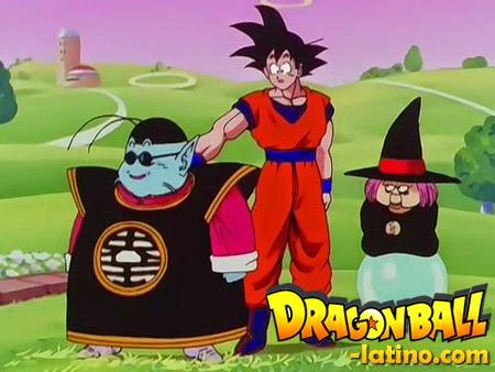 Dragon Ball Z capitulo 205