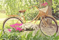 Una bella gita in bici