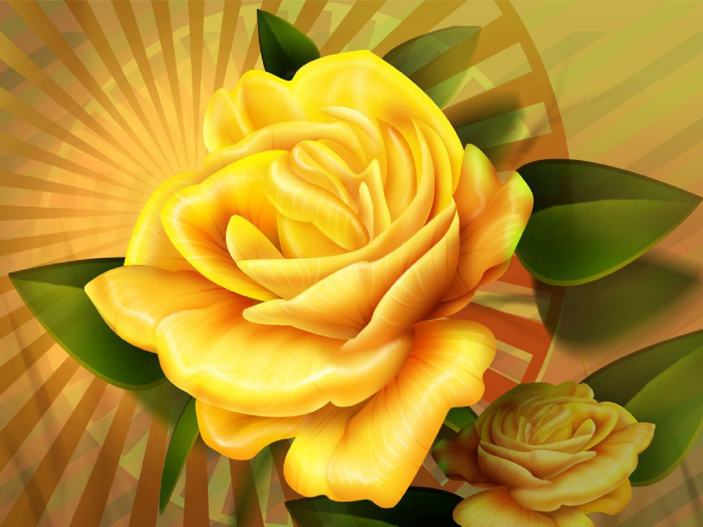 Yellow Rose HD Wallpapers