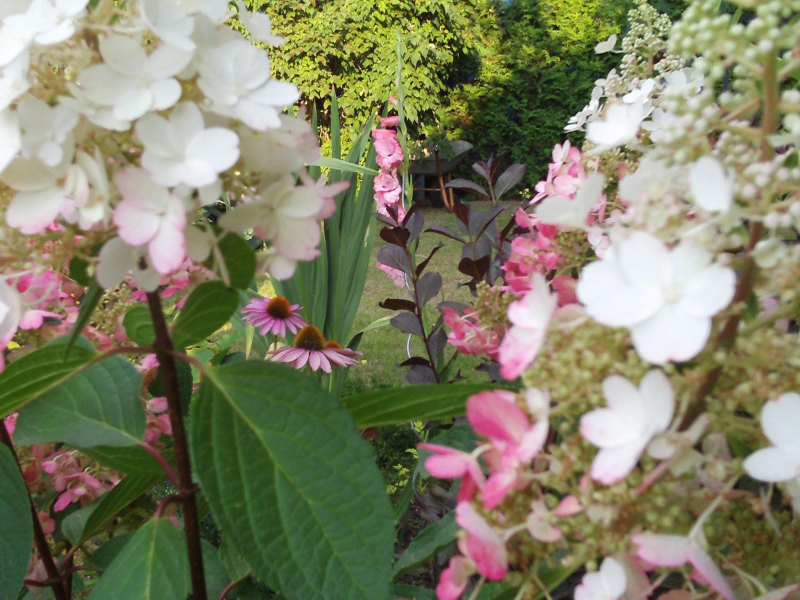 Gartenarbeit im herbst gartenelfe - Gartenarbeit im september ...