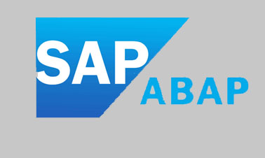 SAP ABAP Training Course