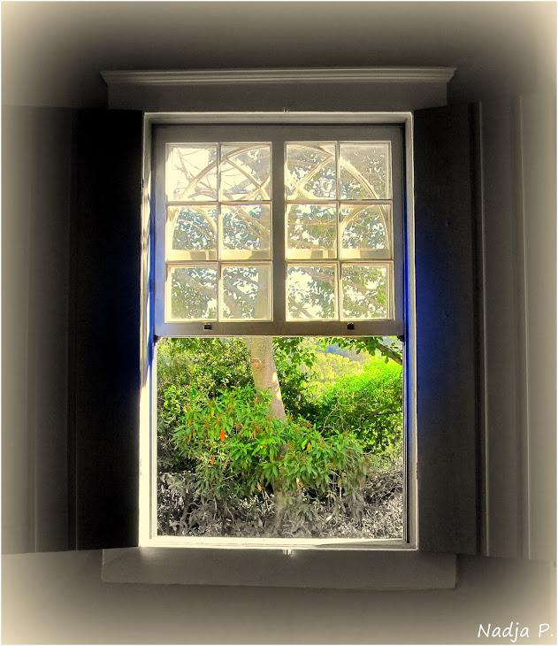 """""""Abra teu coração ou eu arrombo a janela"""""""