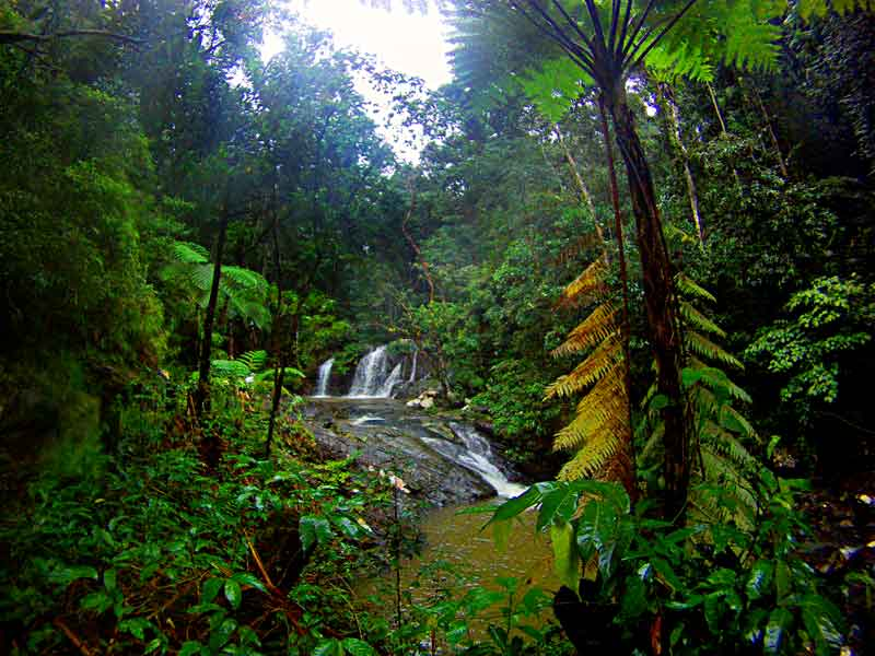 Rizal (Palawan) Philippines  city pictures gallery : Salakot Waterfalls, Napsan, Palawan, Philippines