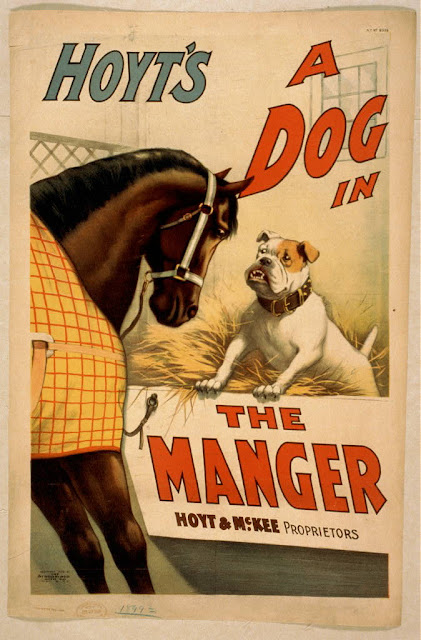 dog, wildlife, classic posters, free download, graphic design, movies, retro prints, theater, vintage, vintage posters, Hoyt's A Dog in the Manger - Vintage Theater Poster