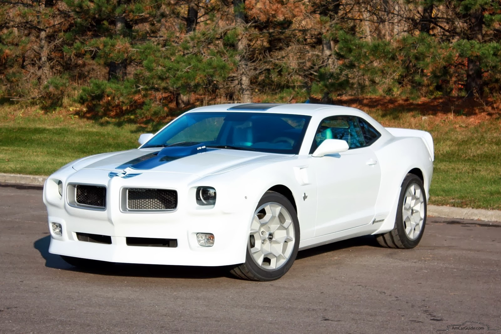 2016 Firebird This image has been resized.