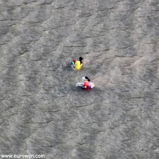 Mariscadores de Lantau