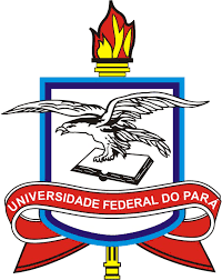 UNIVERSIDADE FEDERAL DO PARÁ - UFPA