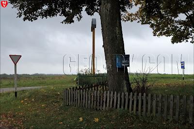Почтовый ящик на дереве