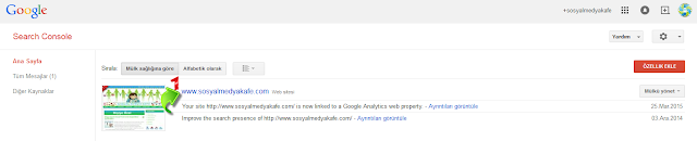 google hızlı index webmasters tools