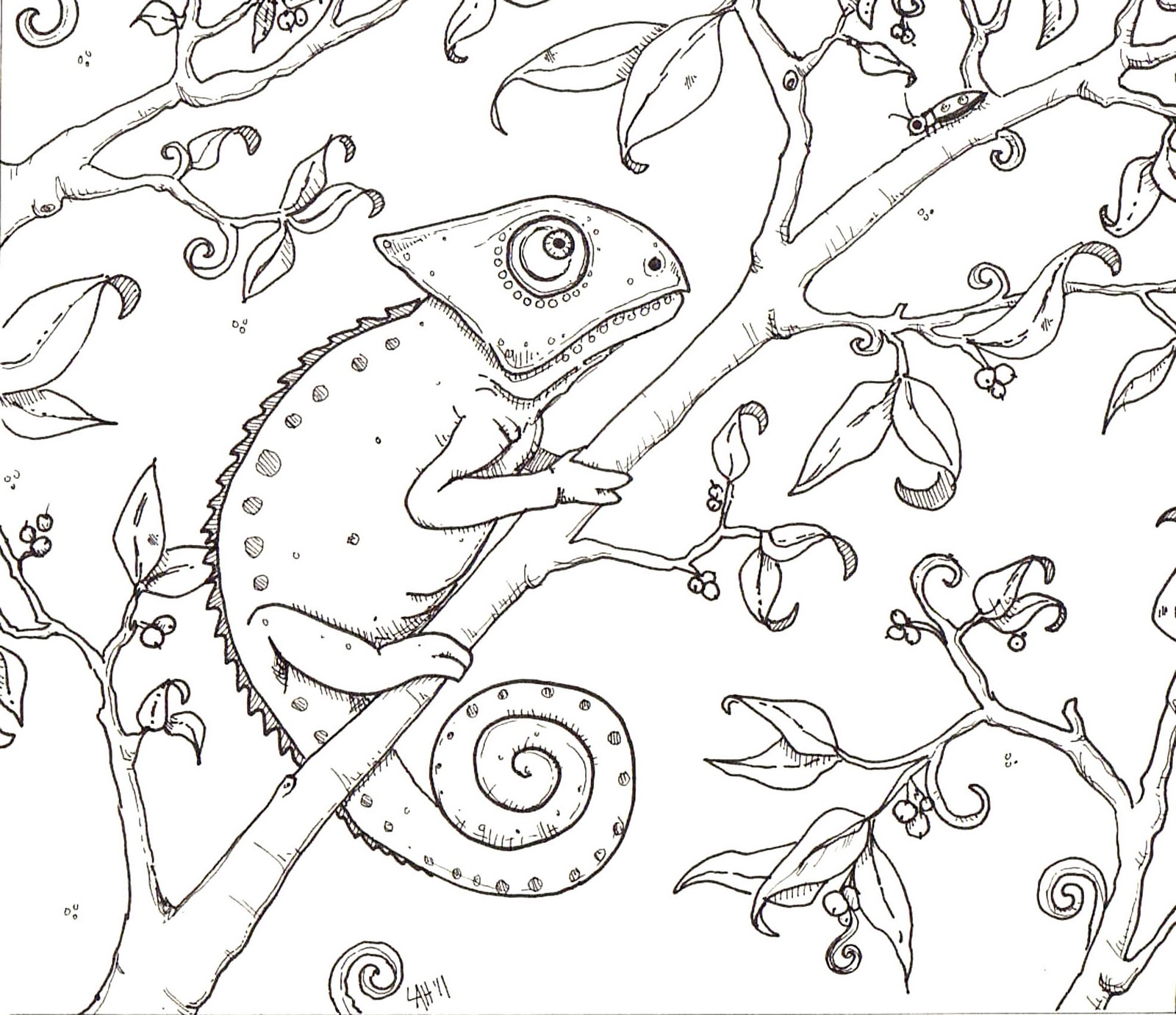 chameleon coloring pages - photo#9