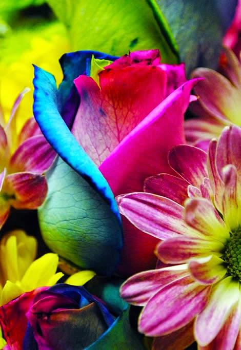 pretty colors..